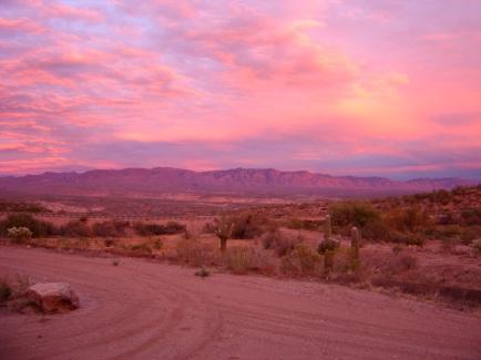 mauve desert